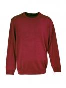 Мъжки пуловер Vity
